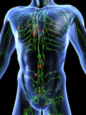 human body is self healing