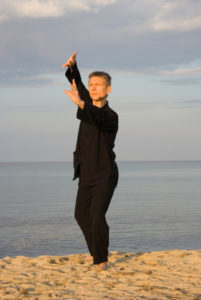 tai chi - posture fan through back